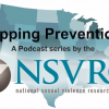 Thumbnail image for Branding prevention: NSVRC's Mapping Prevention series features PreventConnect team member