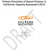 Thumbnail image for New report available on California's capacity for sexual violence prevention