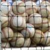 Thumbnail image for Healthy sexuality and…baseball?