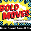 Thumbnail image for 2018 National Sexual Assault Conference registration now open