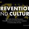 Thumbnail image for Culturally-Informed Prevention: Preventing sexual and domestic violence in communities of color