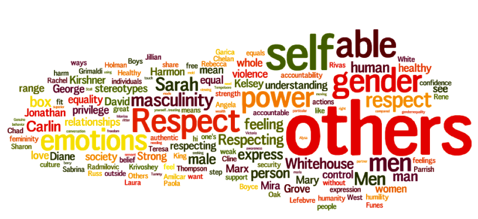 Word cloud from healthy masculinity brainstorm during the web conference