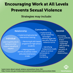 encouraging work on all levels to prevent sexual violence - VetoViolence graphic of social ecological model