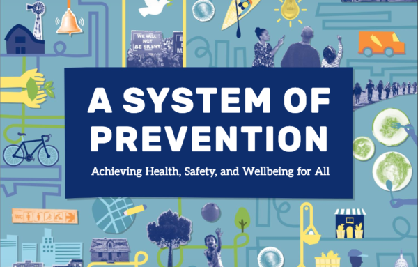 A System of Prevention: Achieving Health, Safety, and Wellbeing for All