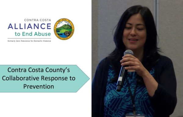2018 National Sexual Assault Conference: A County Capacity Building and Planning Process to Prevent Multiple Forms of Violence