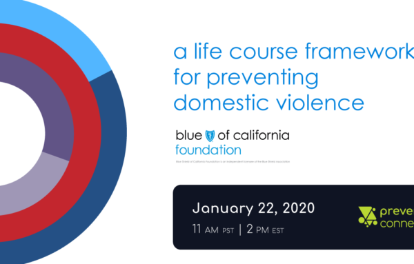 A Life Course Framework for Preventing Domestic Violence
