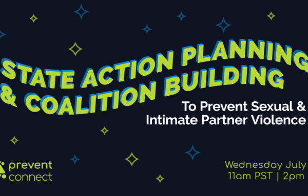 State Action Planning and Coalition Building to Prevent Sexual and Intimate Partner Violence