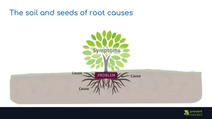 The soil and seeds of root causes. Image of a tree with visible roots and soil. The leaves are labeled symptoms, the trunk is labeled problem, and the roots are labeled causes.