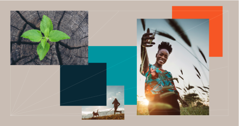 Image from the cover of Back to Basics. From left to right: a leaf sprouting from cracks in a log cut, someone running a nature path with a dog on a leash, a Black woman in a colorful top smiling and reaching her hand toward the camera in a welcoming manner